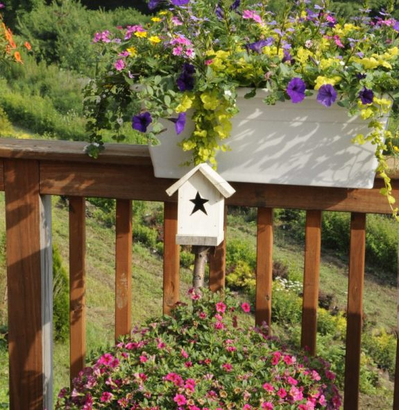container garden on deck with birdhouse